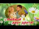Любите друг друга! Очень красивые песни о любви и верности!