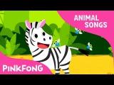 Zebra Cadabra  Zebra  Animal Songs  Pinkfong Songs for Children