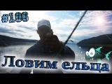 Рыбалка на ельца (на спиннинг)