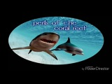 Ecco the dolphin, defender of the future - Perils of the coral reef music