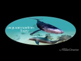 Ecco the dolphin, defender of the future - Aquamarine Bay music