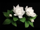 ABC TV | How To Make Gardenia Paper Flower From Crepe Paper - Craft Tutorial