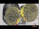 Таможня пресекла ввоз 5,5 кг марихуаны в Белгород