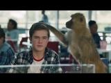 Родителей заменили дикими животными в ролике от McCann (трогательное видео)