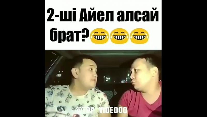 2-айел алсай