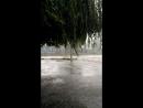 дождь Полумесячная норма за15 минут 17июля 2017 г 06 55