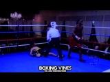 Вырастил солдатом | Boxing Vines