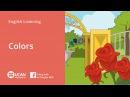 Learn English Via Listening | Beginner: Lesson 41. Colors