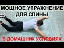 Упражнение для спины и груди пуловер Тренировка мышц спины груди плеч в домашних условиях