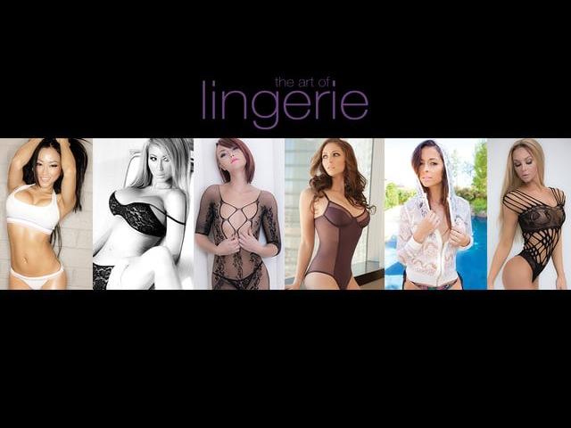 The Art of Lingerie