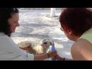 Отдых на острове Крит. Как я поила овечку.