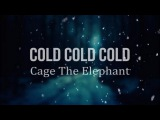Cage The Elephant - Cold Cold Cold (Lyric Video)