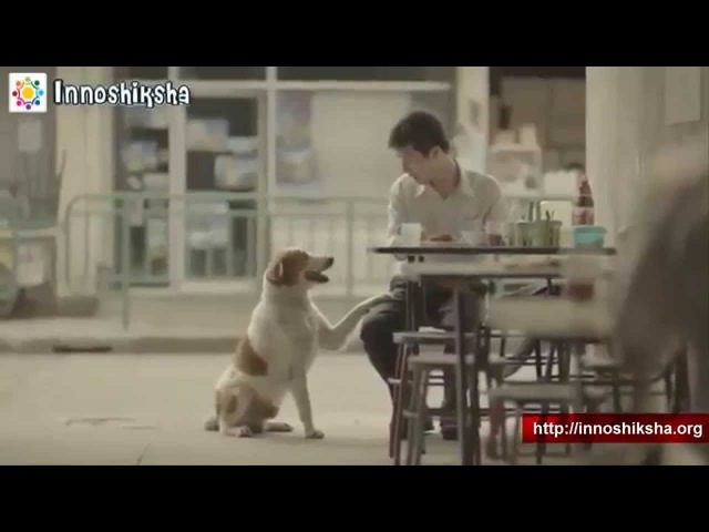 Heartwarming Thai Commercial (2014) - Thai Good Stories By Linaloved