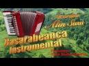 Basarabeanca Instrumental 2017, Alin Susu la Acordeon