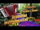 Brauletul Instrumental 2017, Alin Susu la Acordeon