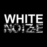 Логотип WHITE NOIZZZE