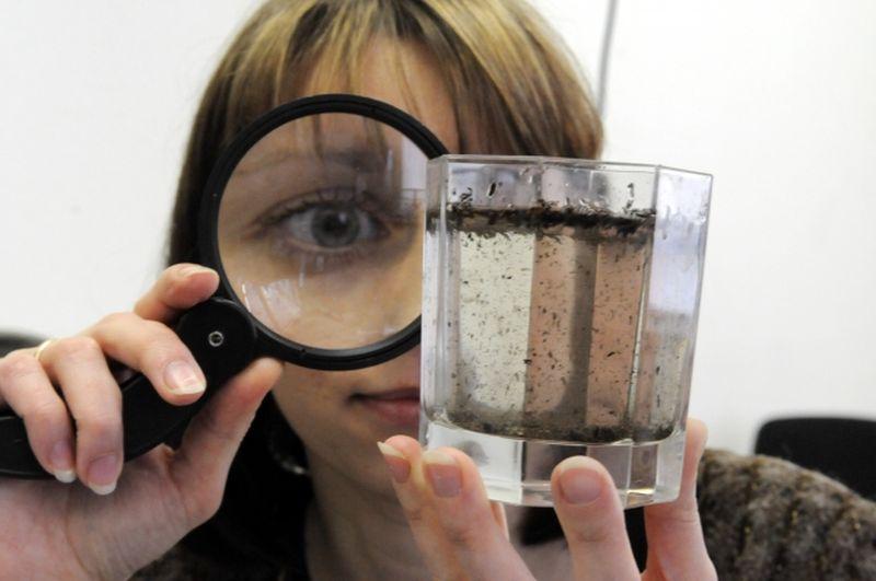 Качество питьевой воды в Зеленчукской не соответствует требованиям безопасности