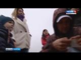 Десятки тысяч мальков рыбы выпустили в Волгу