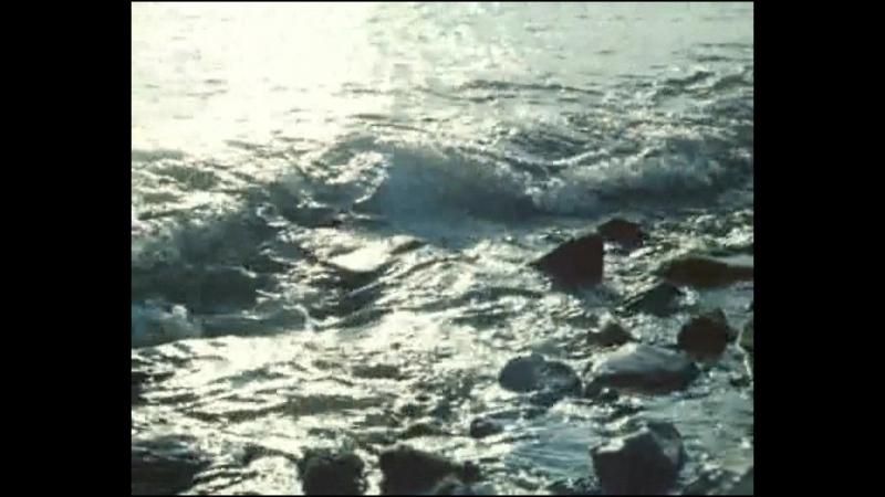 Антарктическая повесть 1979 СССР фильм 2 серия
