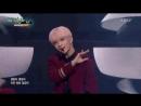 [171117] Seventeen (세븐틴) - Clap (박수) @ Music Bank