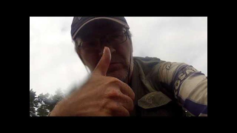 Щука на лягушку и неогруженную резину. Река Медведица, Тверская область.