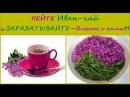 Пей Иван чай Стань Здоровее Сильнее и Богаче