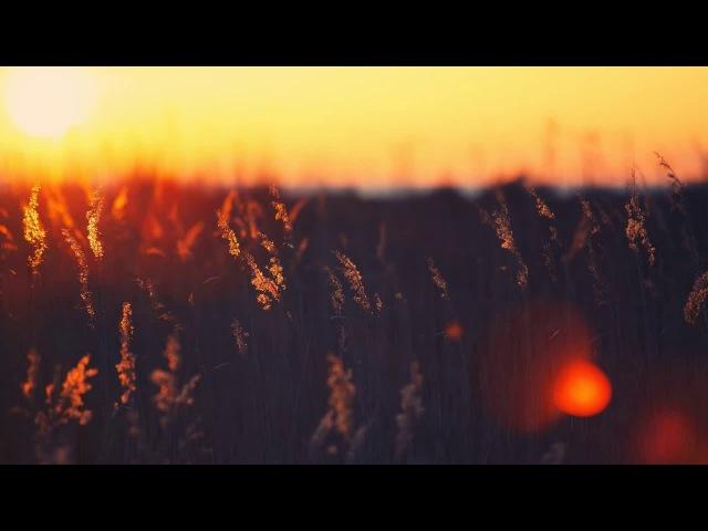 Melodic Progressive House mix Vol 22 (Into The Sunset)