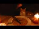 Современный мастер дзен готовит нечто Crepe Suzette
