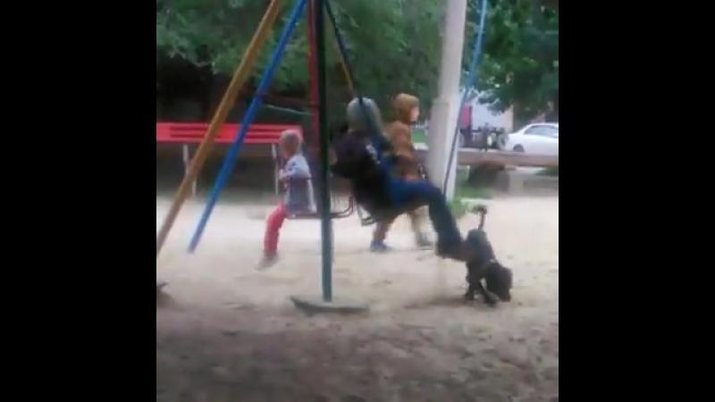 В Волгограде девочка в борьбе с мошками гуляет в противогазе » Freewka.com - Смотреть онлайн в хорощем качестве
