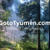 GotoTyumen   Онлайн-гид по Тюмени
