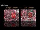 Ulefone Gemini Camera Performance
