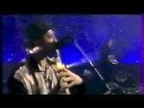 Brigitte Fontaine - Genre humain Live 1995 (Interview et extraits concert)
