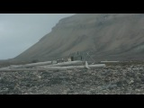 Footage of close encounter with polar bears in Spitsbergen