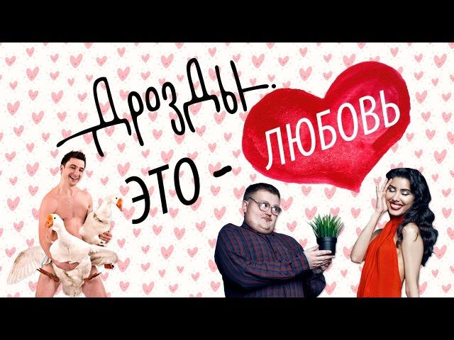 ДРОЗДЫ - Это любовь! ПРЕМЬЕРА ПЕСНИ (Mashup Dance Video)