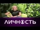 Личность: Ирина Шеховцова
