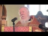 Протоиерей Димитрий Смирнов-Поросят в Царствие Божие не берут (о жизни человека)