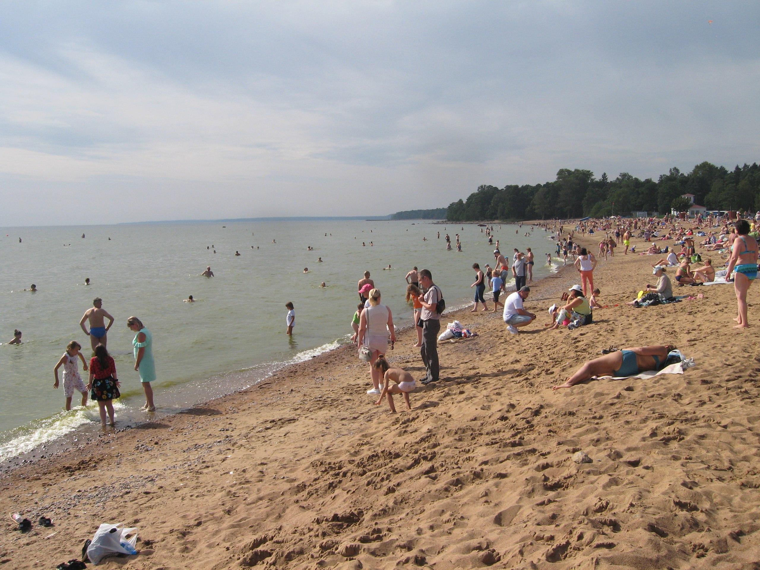 зеленогорск ленинградская область фото пляжей и набережной тому время