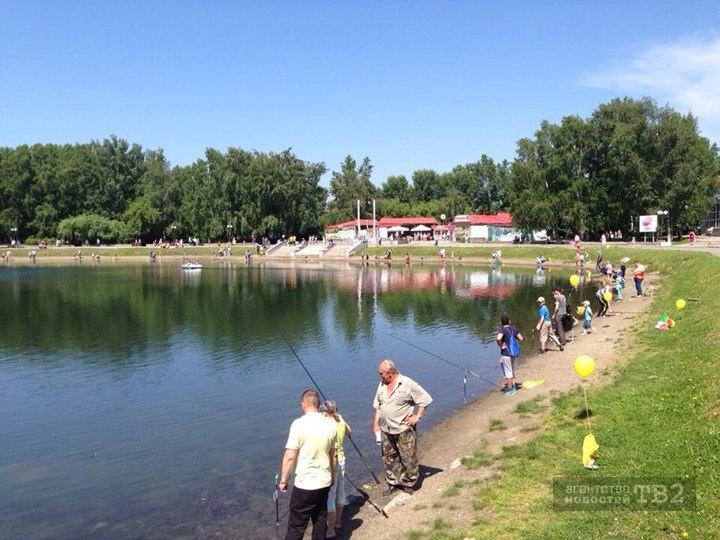 Ученые ТГУ: из-за человека Белое озеро утратило способность к восстановлению