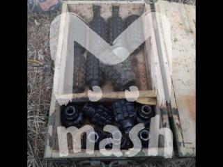 На Сахалине в лесу нашли огромный схрон боеприпасов