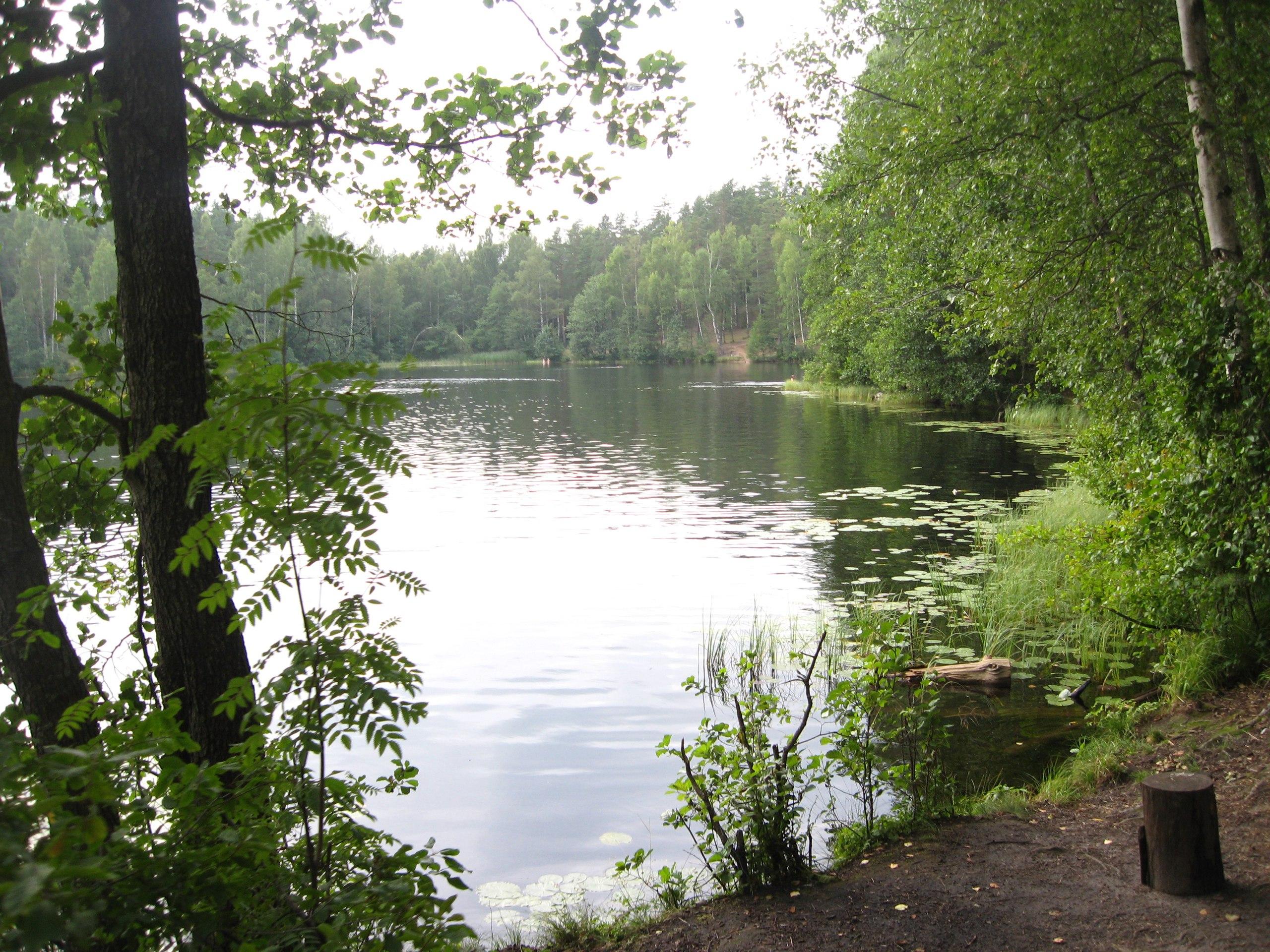 озеро дружинное фото для очищения негатива