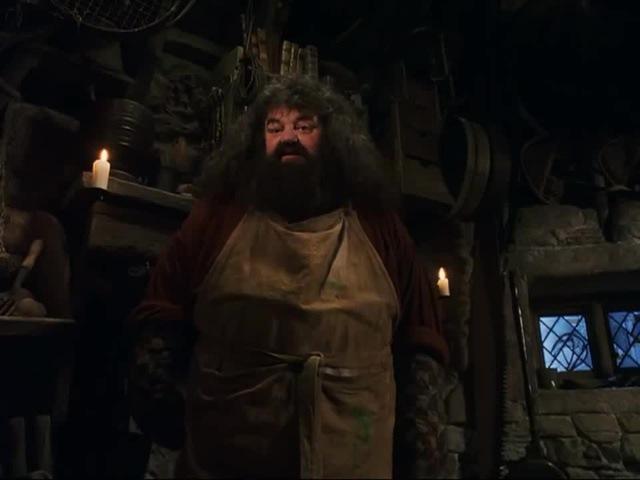 Легенды Хогвартса · coub, коуб