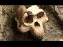 Anton SKALD - Оскорбление чувств верующих в Naturkundemuseum Первые динозавры католики