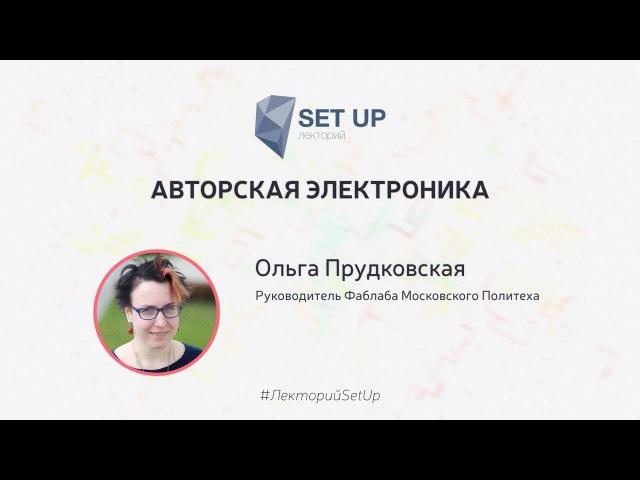 Ольга Прудковская — Авторская электроника
