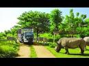 Vinpearl Safari Phú Quốc Flycam HD - Nơi bảo tồn sự sống hoang dã lớn nhất Việt Nam