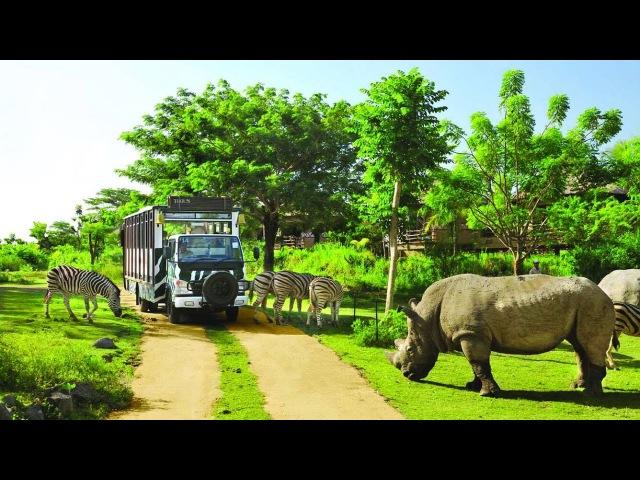 Vinpearl Safari Phú Quốc [Flycam HD] - Nơi bảo tồn sự sống hoang dã lớn nhất Việt Nam