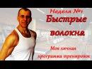 СЕЛУЯНОВ. Гликолитические мышечные волокна. Программа тренировок. (моя).№22