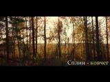Творческая версия Сплин - ковчег 2014 , New Day Company Films.