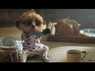 Compare The Market Meerkat Baby Oleg Cute and Funny Commercials Ever (online-video-cutter.com)