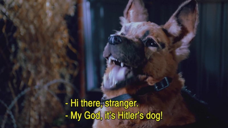 Опасная пятёрка - собака гитлера
