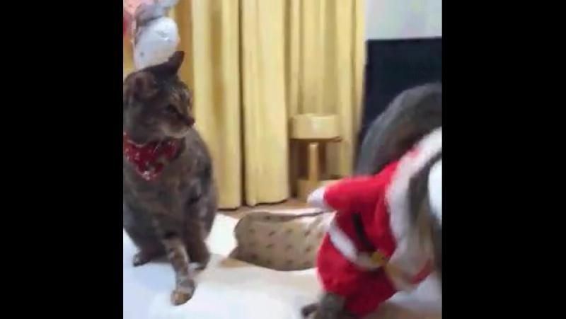 Санта Клауса обижать нельзя